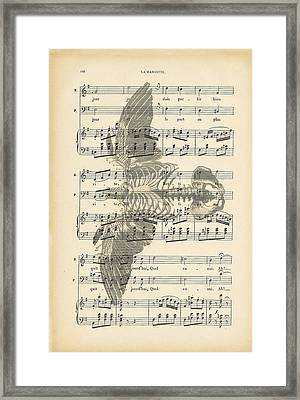 Bird Music Framed Print by Georgia Fowler