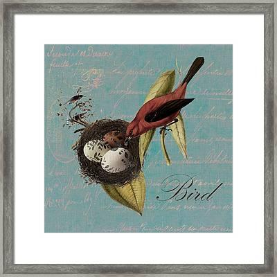 Bird Nest - 02v02t01 Framed Print