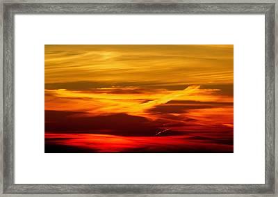 Bird Of Fire Framed Print by Jocelyne Choquette