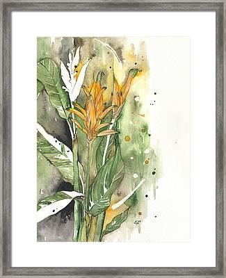 Bird Of Paradise 08 Elena Yakubovich  Framed Print by Elena Yakubovich