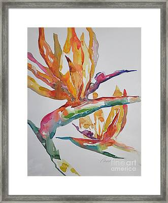 Framed Print featuring the painting Bird Of Paradise #2 by Roger Parent