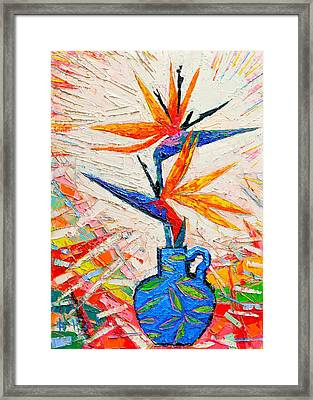Bird Of Paradise Flowers Framed Print by Ana Maria Edulescu