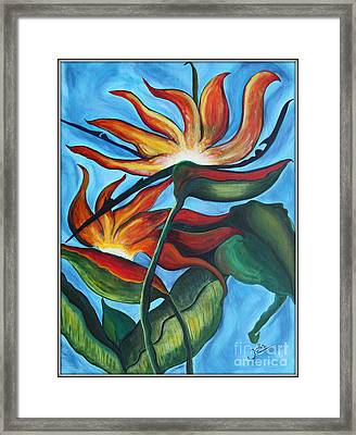 Bird Of Paradise Framed Print by Jolanta Anna Karolska