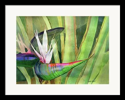 Florida Flowers Framed Prints