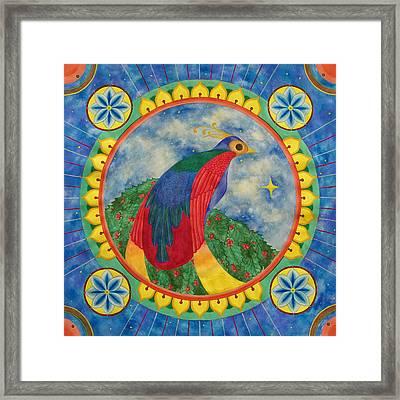 Bird Of Paradise Mandala Framed Print by Vlatka Kelc
