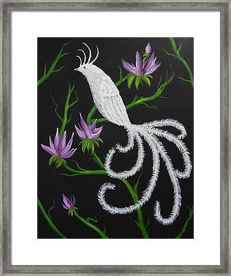 Bird Of Paradise Framed Print by Tanya Provines