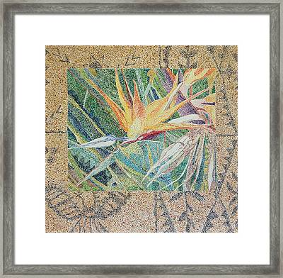 Bird Of Paradise With Tapa Cloth Framed Print
