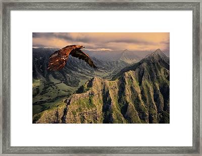 Bird Of Prey 310 Framed Print by Movie Poster Prints