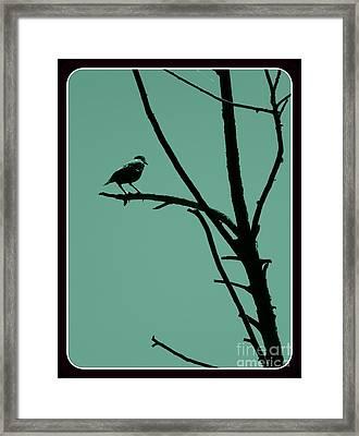 Bird On A Branch Framed Print by Avis  Noelle