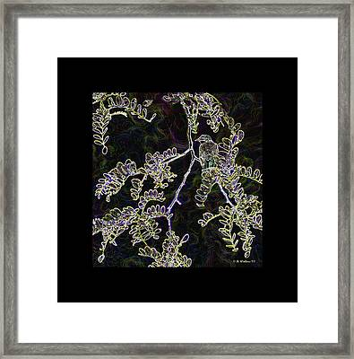 Bird On Branch Framed Print by Brian Wallace