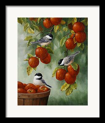 Black-capped Framed Prints