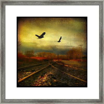 Country Bird Rail Framed Print by Gothicrow Images