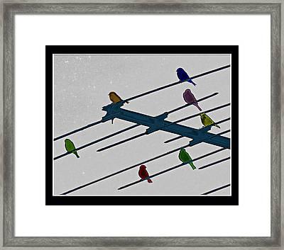 Bird Reception Framed Print