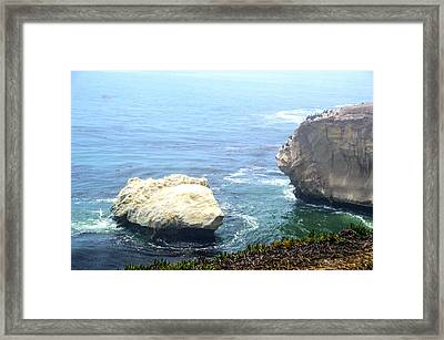 Bird Rock Of Pismo Beach On A Foggy Day Framed Print by Barbara Snyder