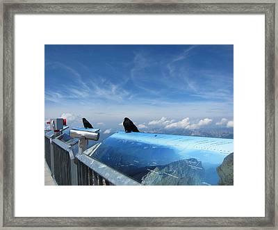 Framed Print featuring the photograph Bird Watch by Pema Hou