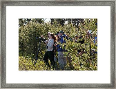 Bird Watchers Framed Print by Jim West