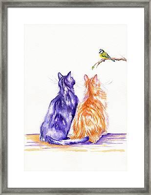 Bird Watching Framed Print by Debra Hall