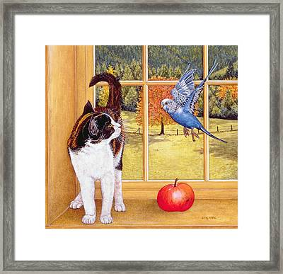 Bird Watching Framed Print by Ditz