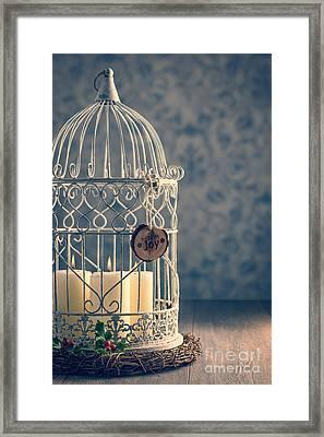 Birdcage Candles Framed Print