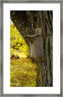 Birdhouse Framed Print by Alex King