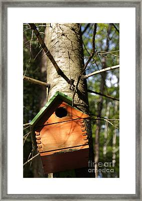 Birdhouse By Line Gagne Framed Print by Line Gagne