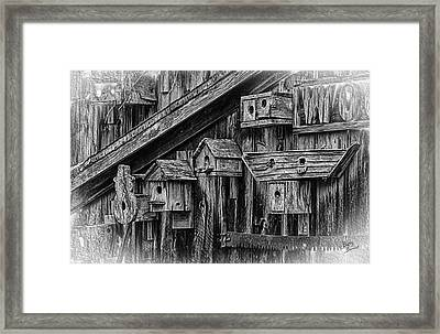 Birdhouse Collection Framed Print