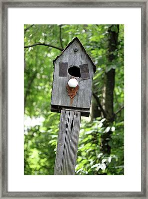 Birdhouse Collection I Framed Print