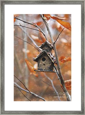 Framed Print featuring the photograph Birdhouse Hanging On Branch With Leaves by Sandra Cunningham