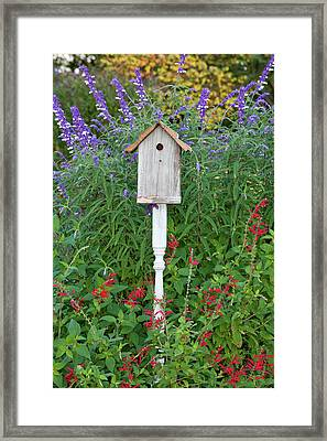 Birdhouse In A Garden With Mexican Bush Framed Print