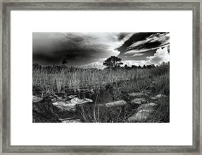 Birdon Canal Framed Print