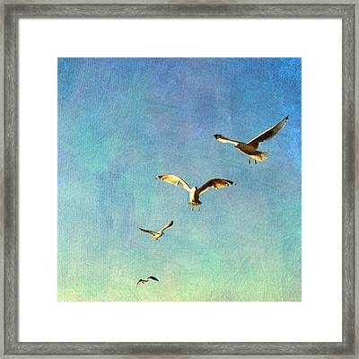 Birds Above Framed Print