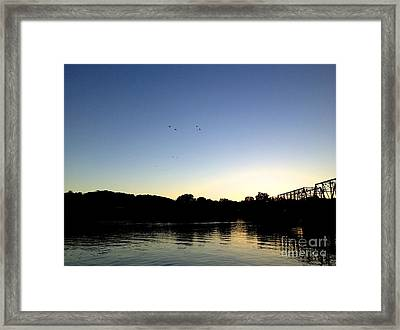Birds And Blues Framed Print