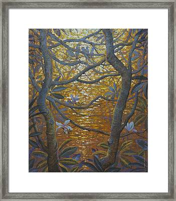 Birds And Light Framed Print