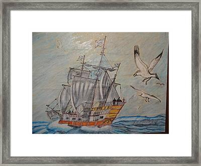 Birds At Sea Framed Print