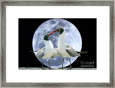 Framed Print featuring the photograph Birds Do It... by Mariarosa Rockefeller