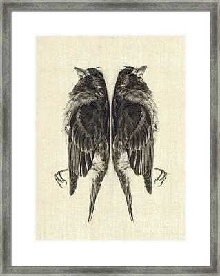 Mirror Mirror Framed Print by Edward Fielding