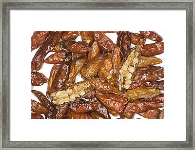 Bird's Eye Chilli Peppers Framed Print by Power And Syred