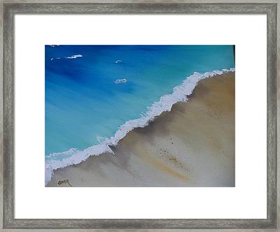 Birds Eye View Framed Print by Conor Murphy