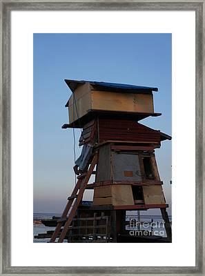 Birds House Framed Print by Arik S Mintorogo