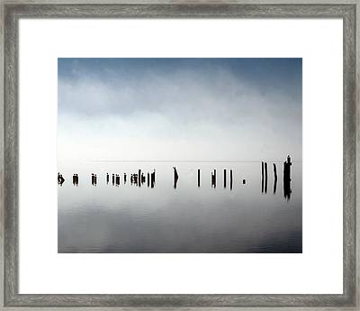 Birds In Fog Framed Print