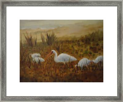 Birds In The Marshes Framed Print by Betty Pimm