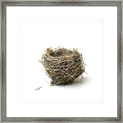 Bird's Nest Framed Print