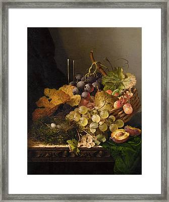 Birds Nest Butterfly And Cherries Framed Print by Edward Ladell