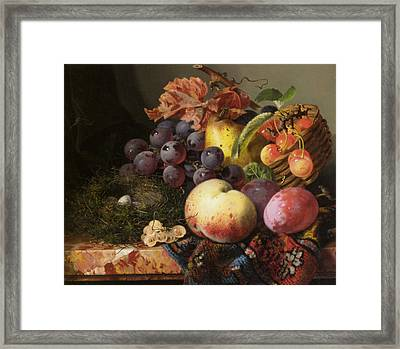 Birds Nest Butterfly And Fruit Basket Framed Print by Edward Ladell