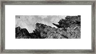 Birds Nesting In Cliffs, Norway Framed Print