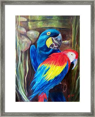 Bird's Of A Feather, Macaws Framed Print