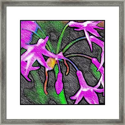Birds Of A Flower Framed Print by Mary Ciambotti
