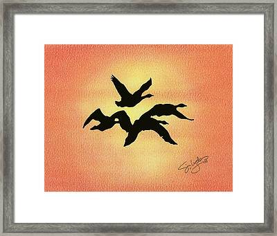 Birds Of Flight Framed Print by Troy Levesque
