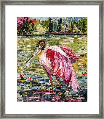 Birds Of Florida Roseate Spoonbill Framed Print by Ginette Callaway