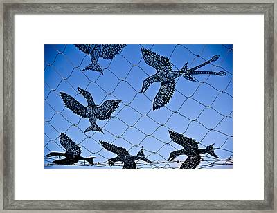 Birds Of Paradise Caught In A Net Framed Print